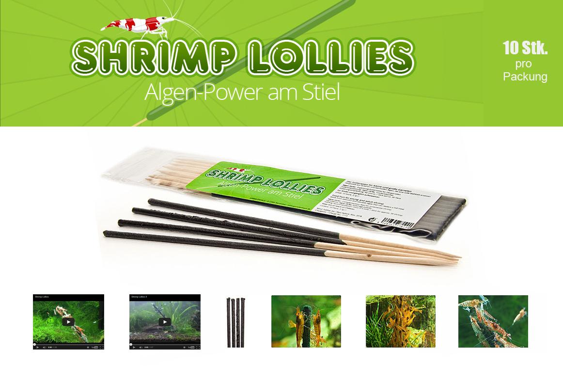 die shrimp lollies sind da neues im garnelenhaus der wirbellotse. Black Bedroom Furniture Sets. Home Design Ideas