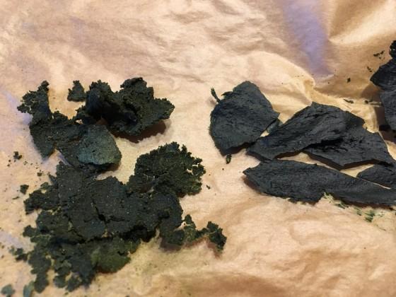 Algen-Chips 2