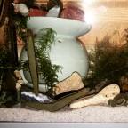 Schlafenszeit für Egel Schnecken und Muscheln