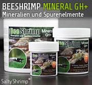 BEESHRIMP MINERAL GH+